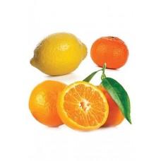 CITRUS BLISS (Invigorating blend / Цитрусовая нега), смесь эфирных масел, 15 мл