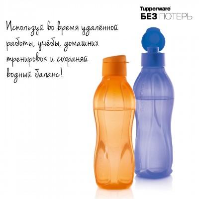 Эко-бутылка (750 мл) *2 шт