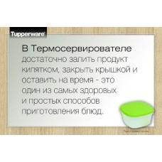 ТЕРМОСЕРВИРОВАТЕЛЬ (3 Л)